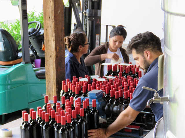 Workers labeling wine bottles at Mendel Winery near Mendoza Argentina