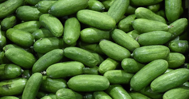 Cucumbers recalled after salmonella outbreak in 27 states