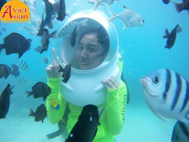 Tour Đi Bộ Dưới Biển kết hợp tour 4 đảo 5