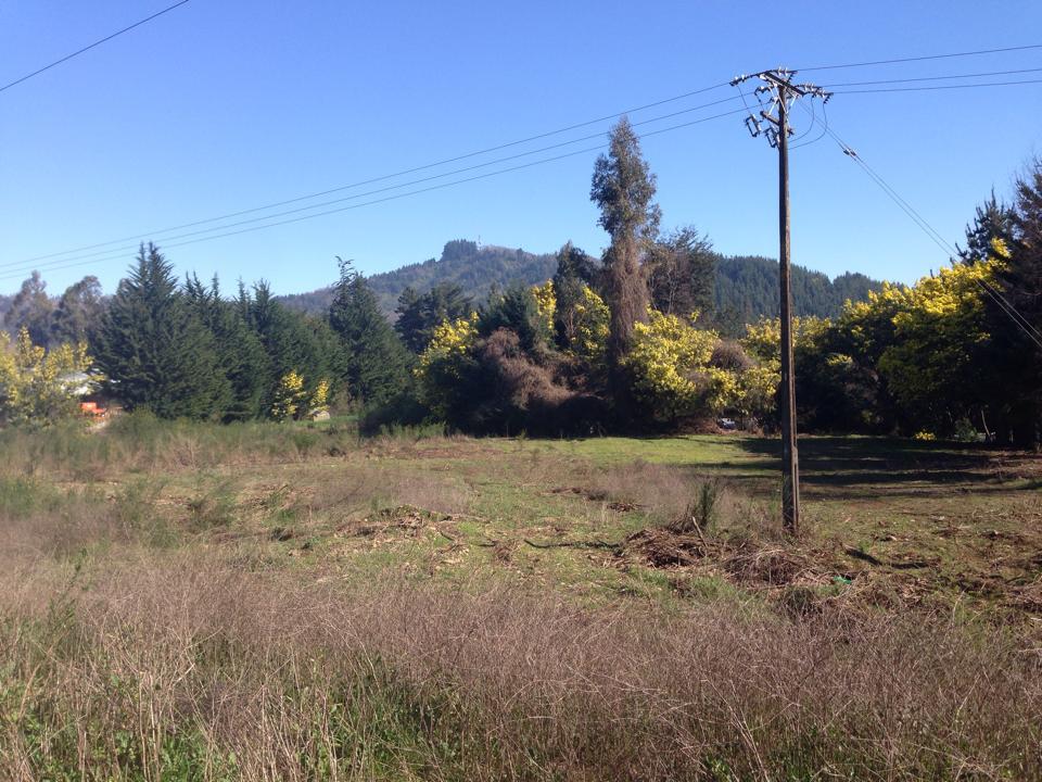 Rachel propiedades arriendo de terreno en salida norte de for Arriendo de casas en temuco