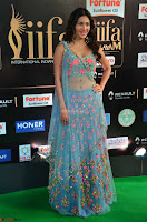 Amyra Dastur in Flower Print Choli Transparent Chunni at IIFA Utsavam Awards006.JPG