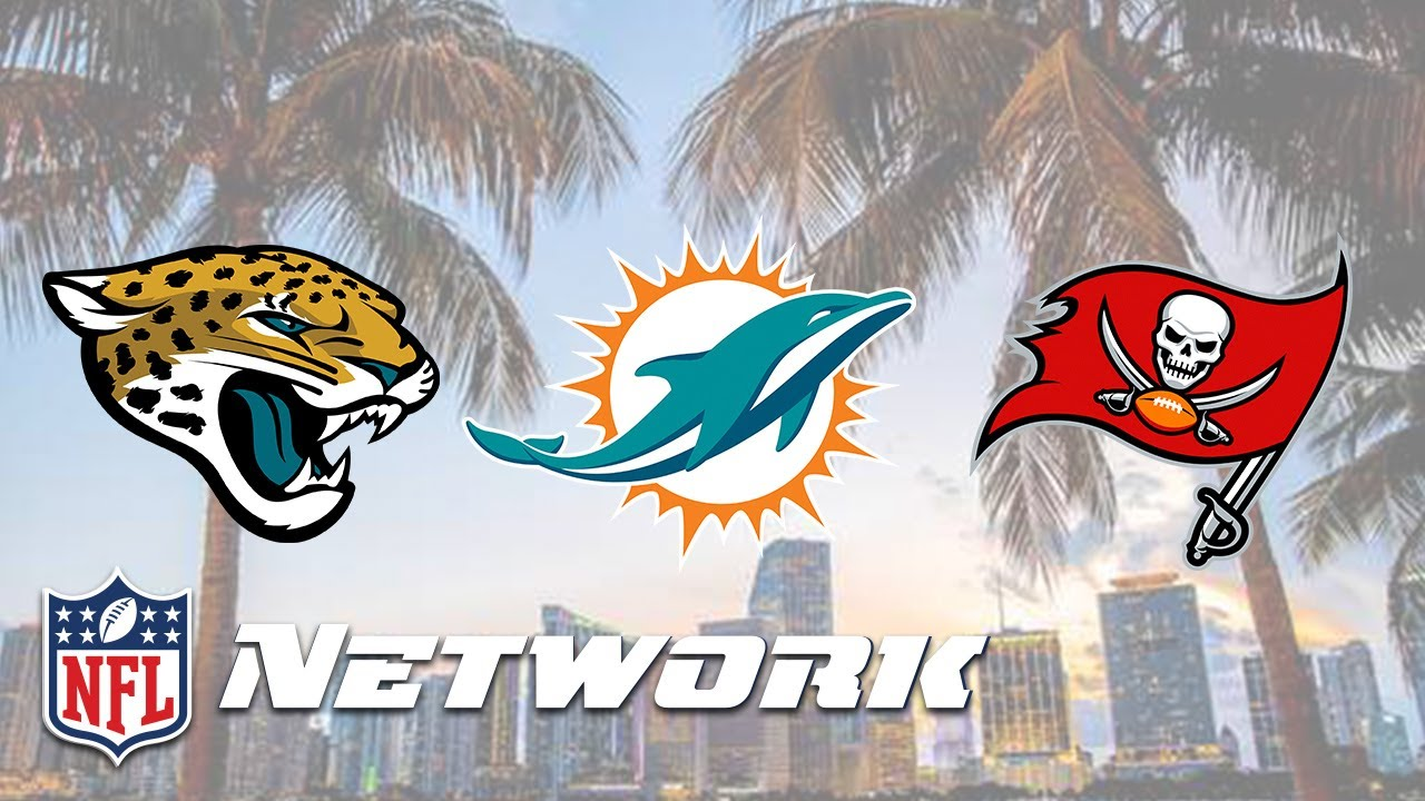 the three nfl teams in florida left to right jacksonville jaguars miami dolphins tampa bay buccaneers