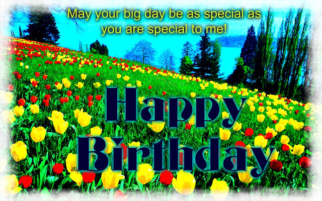 Happy Birthday Flowers For Lover HD Wallpapers Free Download