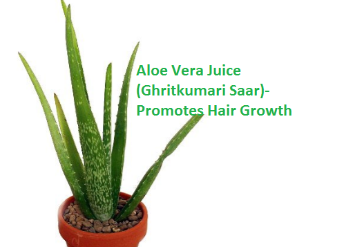 Aloe Vera Juice (Ghritkumari Saar)- Promotes Hair Growth