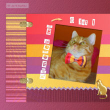 Kot paskowy ;)