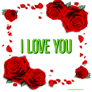 Rose flowers Love proposal png image Greetings for lovers