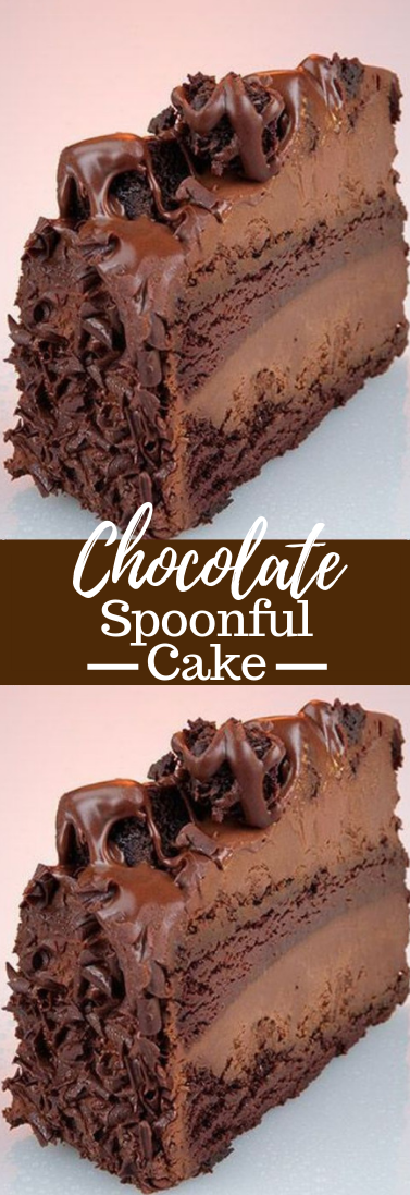 Chocolate Spoonful Cake #dessert