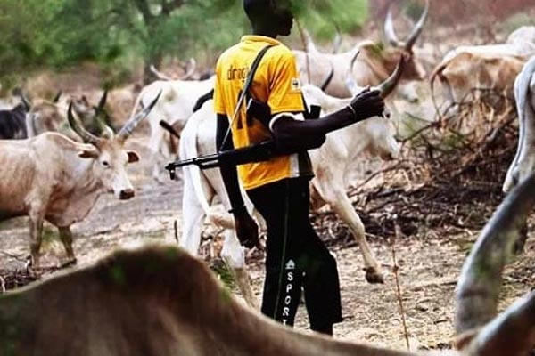 """We can't stop Fulani herdsmen coming from neighboring countries"""