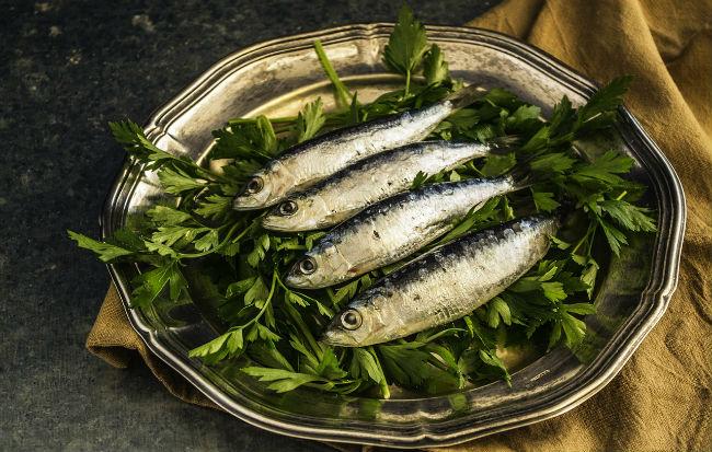Sardine, pesci con tanti omega 3