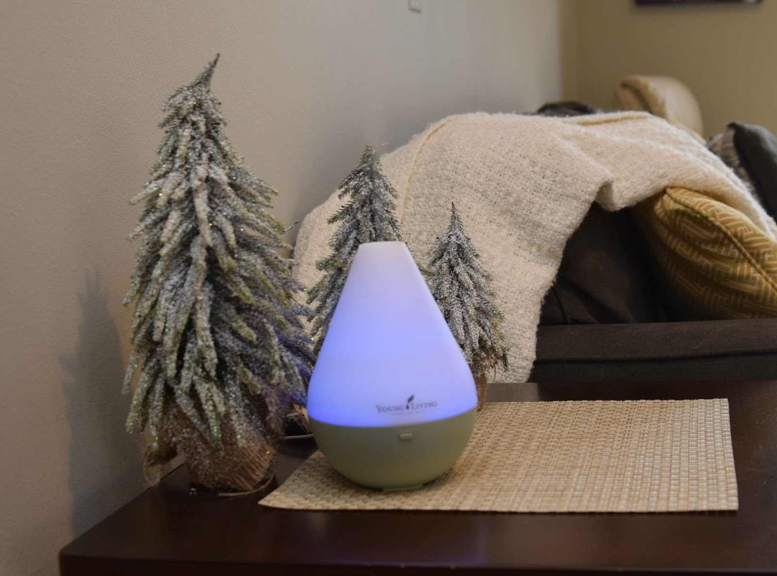 Young living diffuser broken