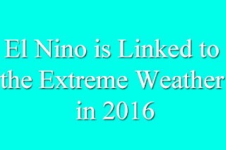El Nino is Linked to the Extreme Weather in 2016