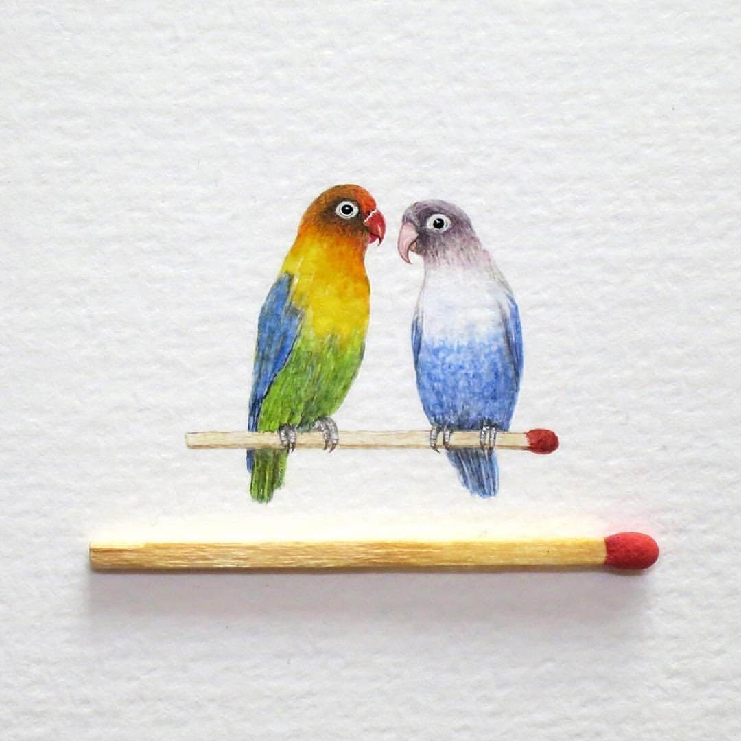 07-Lovebirds-Frank Holzenburg Miniature Drawings and Paintings of Animals-www-designstack-co
