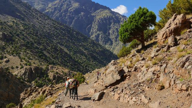 najwyższy szczyt Maroka, Jebel Toubkal, trekking na jebel toubkal, trekking maroko, trekking atlas wysoki