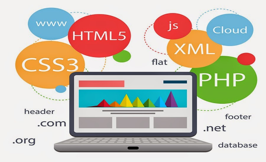The Different Web Design Courses