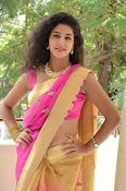 pavani new photos in saree-thumbnail-21