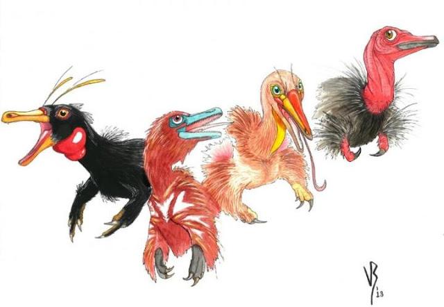 Rare intermediate fossils give researchers insight into evolution of bird-like dinosaur