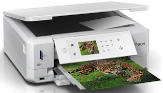 Epson XP-645 Printer Driver Free Download for Windows and Mac