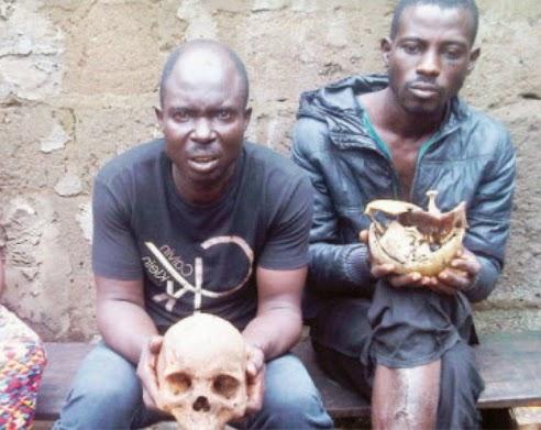 herbalist human part sellers ogun state