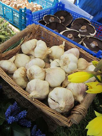 Basket of garlic.