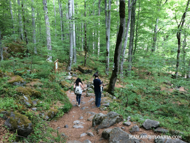 Camino cueva de Iván Rilski Rila Bulgaria