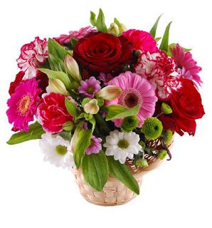 kwiaty poznań