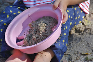 small child in shorts holds sifter and shovel with sand and rocks in it