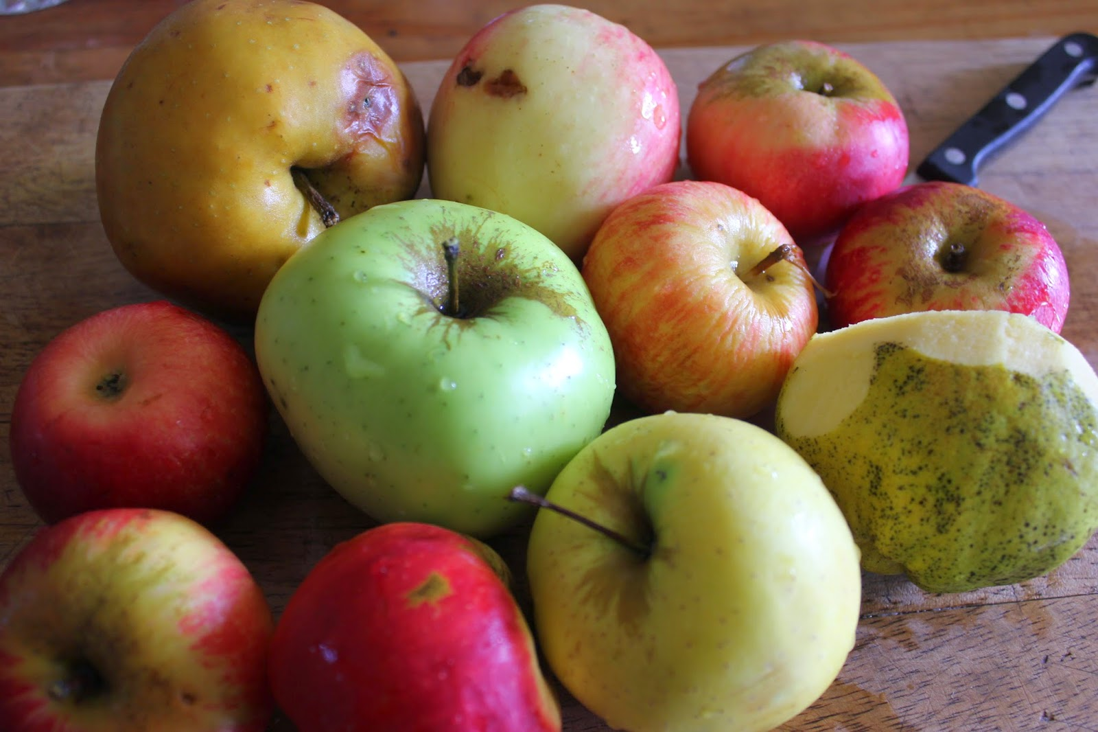 Old Apple Varieties