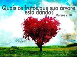 """""""A árvore boa não pode dar frutas ruins, e a árvore que não presta não pode dar frutas boas"""" – Mateus 7.18 (NTLH). Sermão do Monte"""