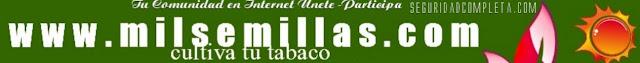 Cultiva tu tabaco es FACIL compra tus semillas aqui