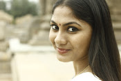 Shruti Reddy latest photos in half saree-thumbnail-8