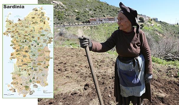 Archaeogenetic findings unlock ancestral origins of Sardinians