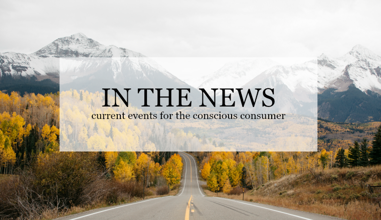 clothing industry news for conscious consumer