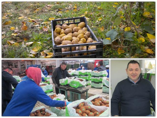 Άρτα: Η Kolios Fruit,έχει απλώσει τα φτερά των εξαγωγών της σε Κίνα, Χονγκ Κονγκ, Σιγκαπούρη, Λίβανο, Αμερική και Καναδά