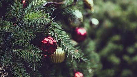 Christmas Tree. Merry Christmas iPad