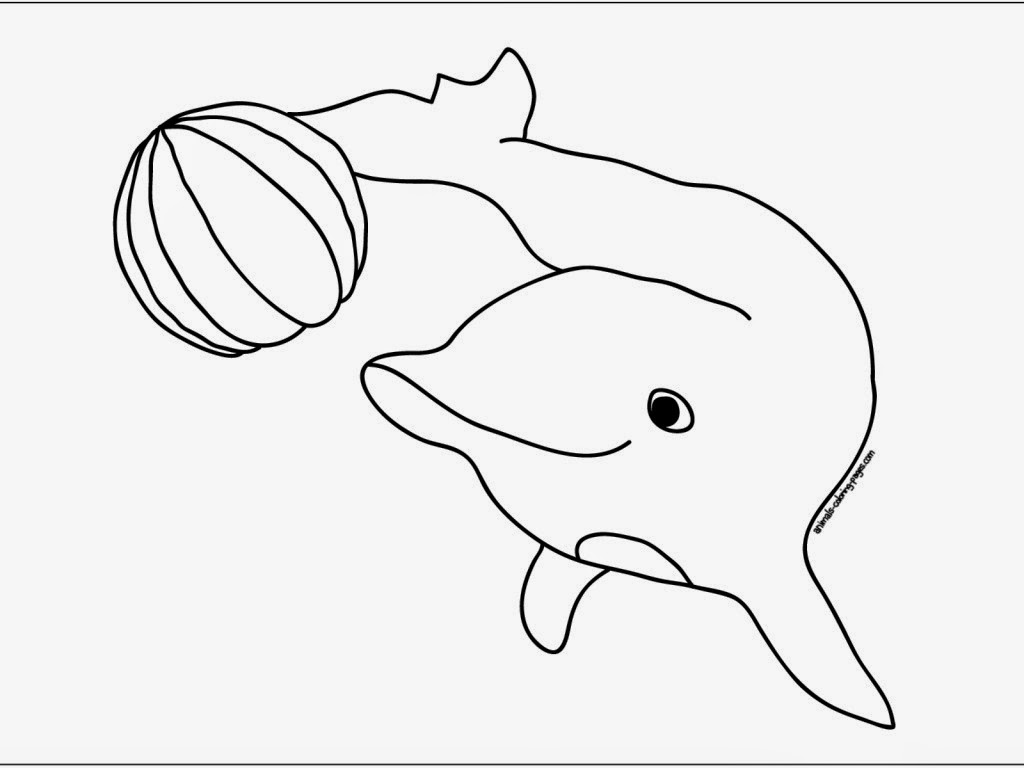 Dolphin to Draw Print Color Cut and Paste Coloring