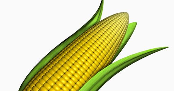 16 Manfaat & Khasiat Nasi Jagung Untuk Kesehatan