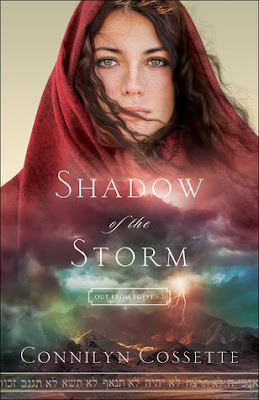 BOOK REVIEW: Shadow of the Storm by Connilyn Cossette