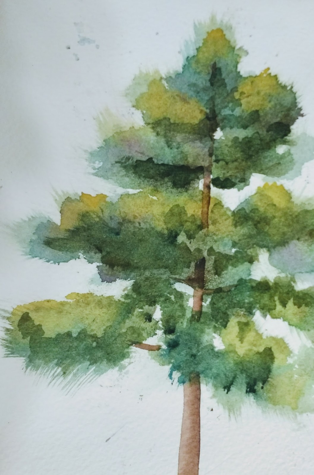 Chris Campbell Watercolors: TREES, TREES, TREES