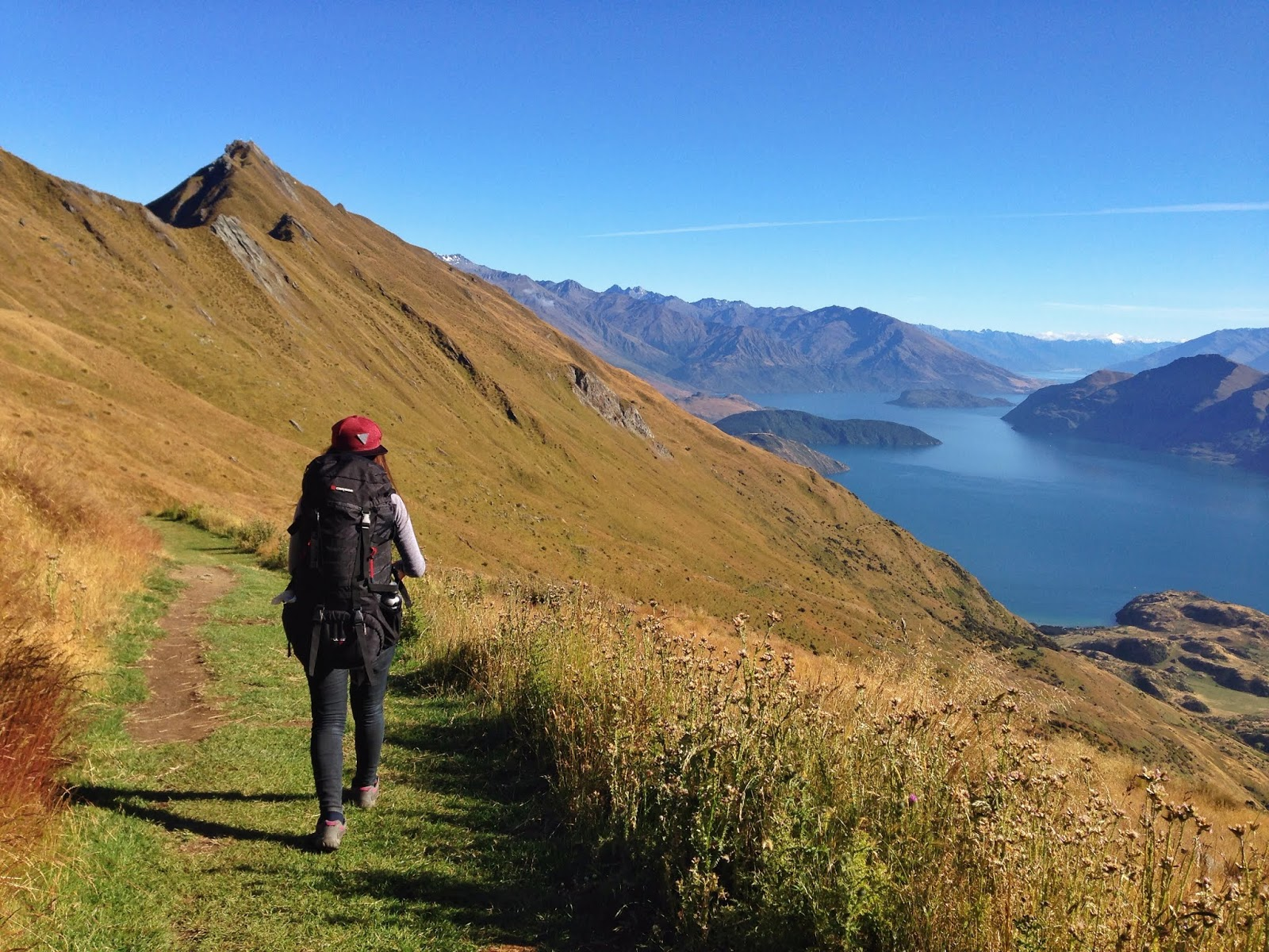 Quit My Job And Backpacking In New Zealand Bucket List Journey