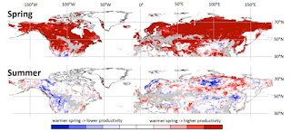 Satellite observations show that warmer springs result in higher vegetation productivity in spring but (in many regions) in lower productivity in summer and autumn. (Credit: TU Wien) Click to Enlarge.