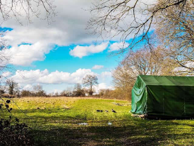 kampeerveld, safaritent
