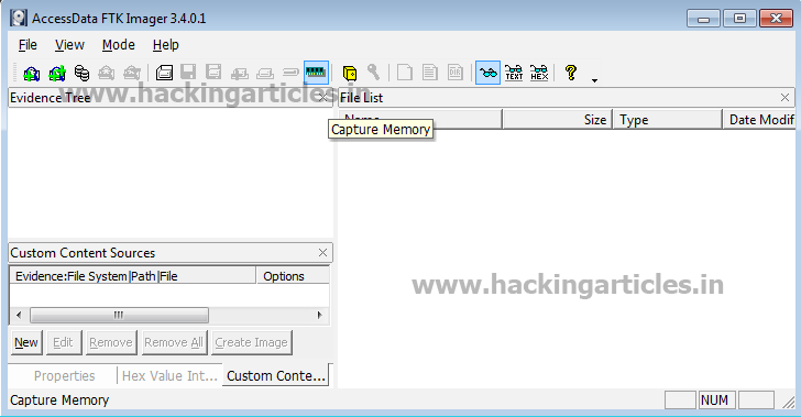Forensics Analysis of Pagefile and hibersys File in Physical Memory