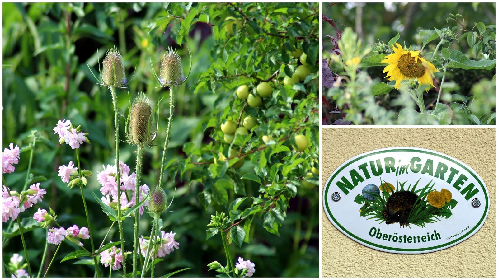 Naturnah Natur Im Garten Plakette