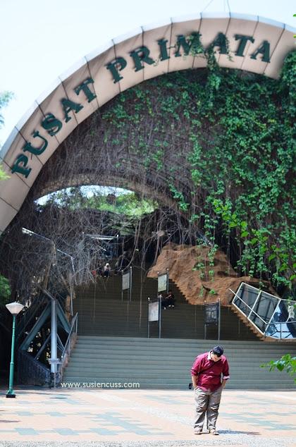 Main ke kebun binatang ragunan, jakarta. Harga tiket murah yang cuman Rp4.000,-  puas banget keliling dan melihat semua binatang di sini!