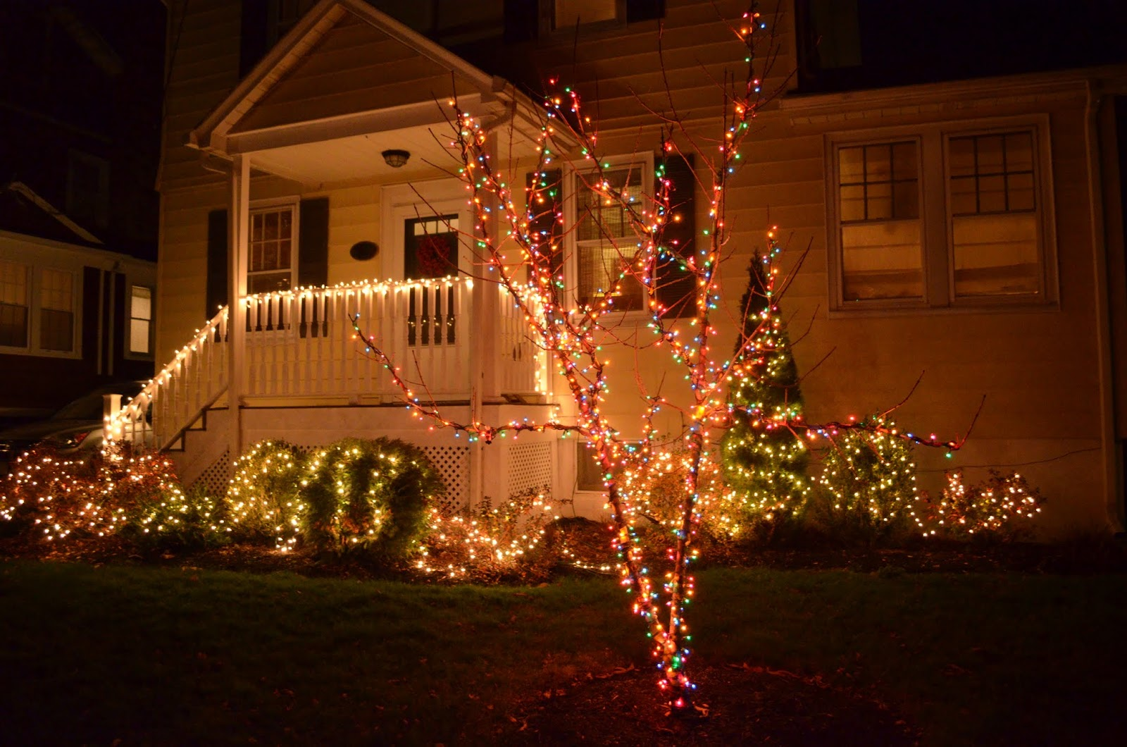 This Year I Feel Like We Really Nailed Our Lights Know Not Everyone Loves The Look Of Mixing Colors And White But Think It Makes Color Tree