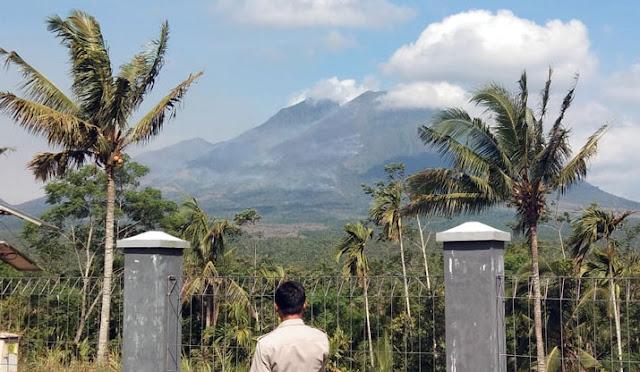 Hutan dan lahan di kawasan Gunung Lemongan terbakar