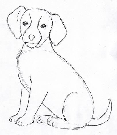funny pictures: How to draw a dog easily for kids