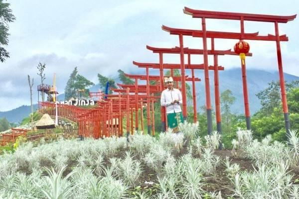 5 Fakta Taman Jinja, Destinasi Wisata Hits Ala Negeri Sakura di Bali