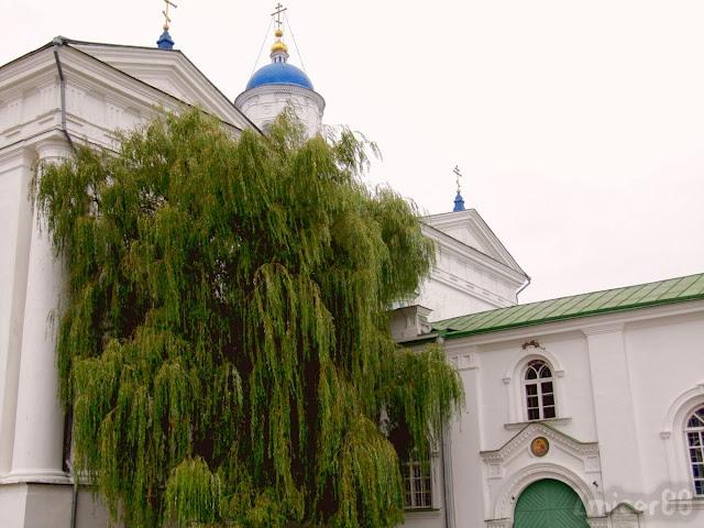 Сабор Успення Прасвятой Багародзіцы