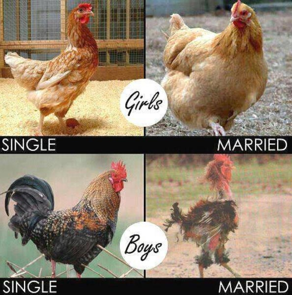 NGLatest guys and ladies, how true is this?